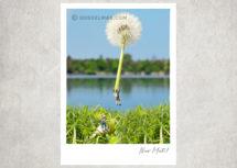 Miniaturfotografie - Kleine Freiheit / Nur Mut (Art.-Nr.: PK-MIN-01-004)